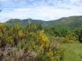 Montpezat vallée du Fau col du pal  ran Ranier.JPG
