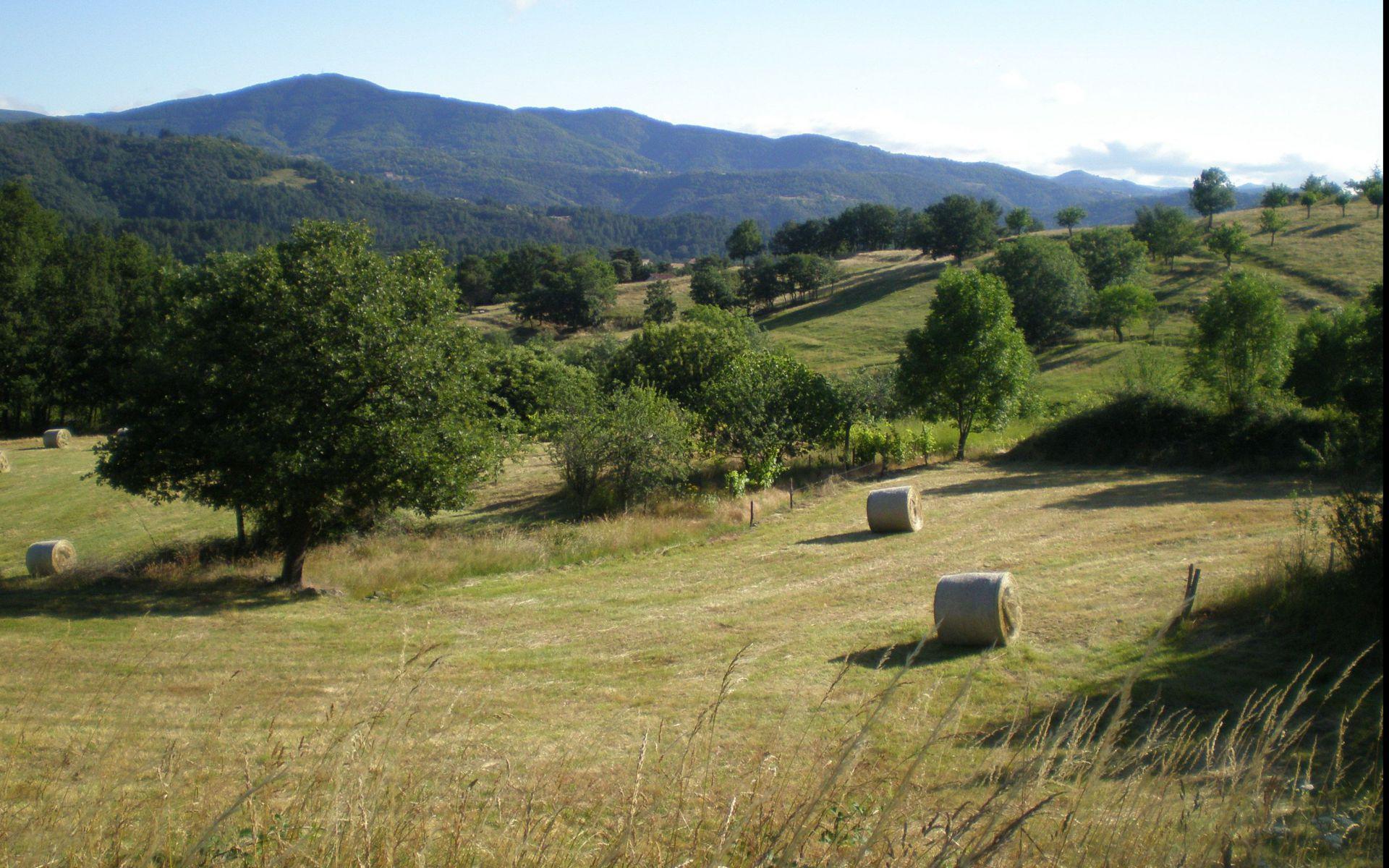 PRADES Le Village - Gite Ardèche 5/11 personnes